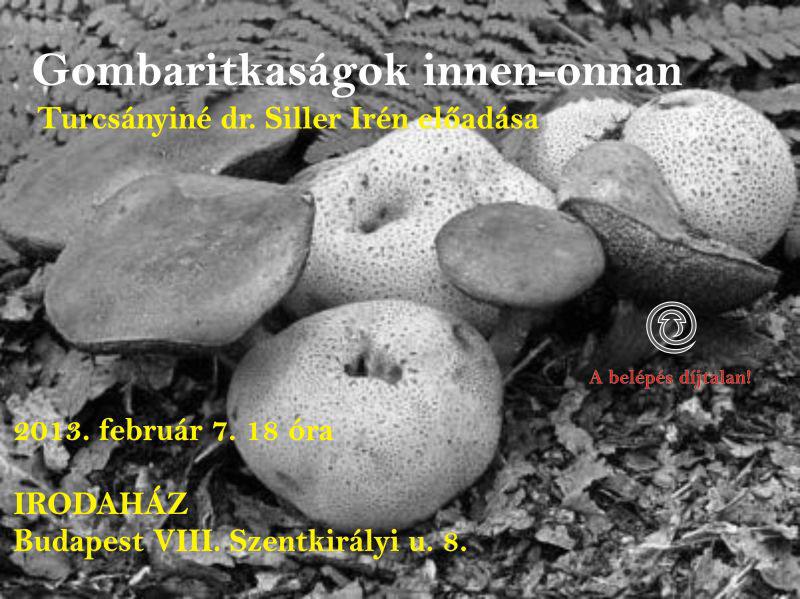siller_ea_0207_2013-01-29.jpg